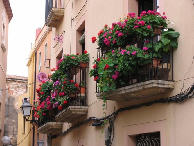 Часто французские балконы украшают цветами